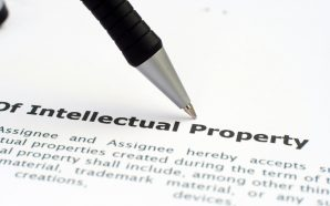 What are Patent Lawyers?